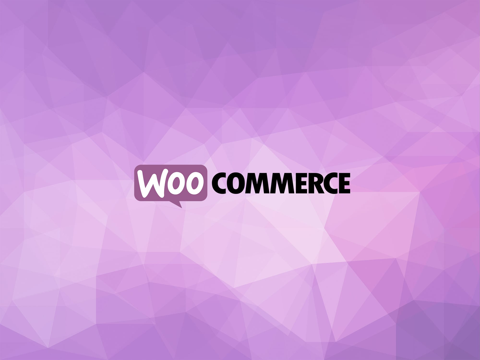 hobits technologies woocommerce