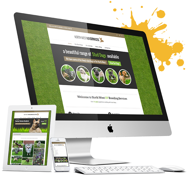 website design in lakeland florida by hobits technologies